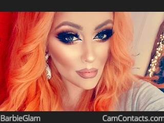Live chat with Damsel dom BarbieGlam expects a weak male
